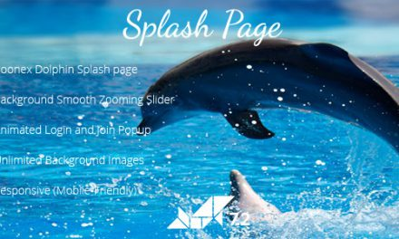 Dolphin Responsive Splash page